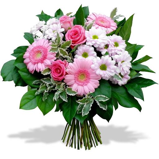 Grafika: róże